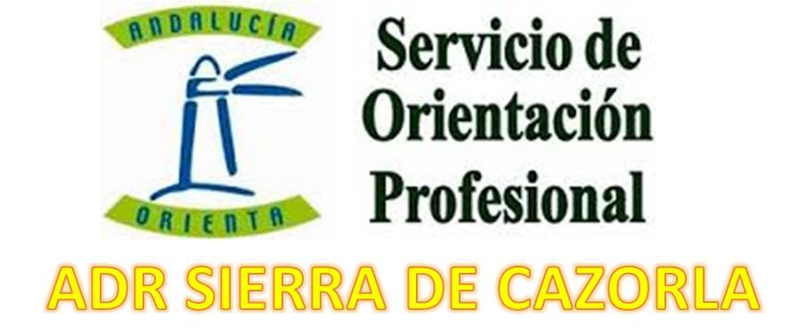 Logo ORIENTA