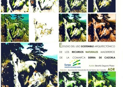 https://issuu.com/adrsierracazorla/docs/estudio_de_la_madera_completo
