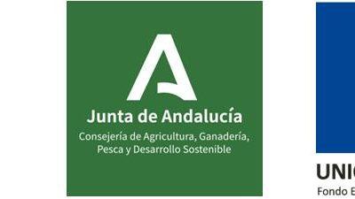 PUBLICACIÓN RESOLUCIÓN DEFINITIVA AYUDAS LEADER: L3– INNOVATE, L4- INNOTURISMO Y L5-PUEBLO RURAL, EN LA WEB DE LA CONSEJERÍA. ANUALIDAD 2017 -1ºP